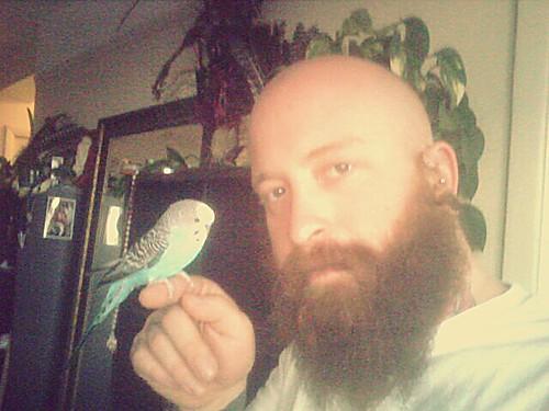Birdman Randall