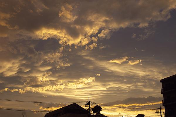 sunset 090719