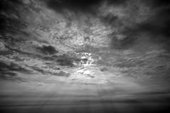 monochrome sunrise @ hoher kasten switzerland (Toni_V) Tags: sky bw monochrome clouds sunrise schweiz switzerland blackwhite suisse hiking 2009 appenzell randonnée d300 sigma1020mm hoherkasten brülisau toniv dsc0219 090808