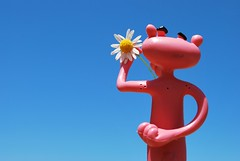 For You! (Srch) Tags: pink toy panther pinkpanther panterarosa monito nikond60 lapanterarosa
