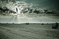 Hay bales at a cloudy sunrise (David Pinzer) Tags: summer cloud field rural sunrise dawn countryside cloudy sommer country grain cereal harvest feld wolke crop land dmmerung hay sonnenauf