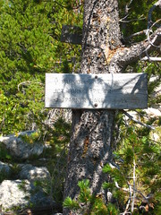 Parker Ridge Trail, Selkirk Mountains, North Idaho