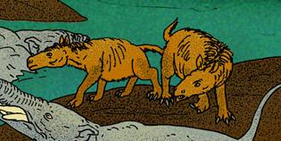 Rhynchippus de Wikimedia