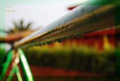 Gotas en linea. (HBW) (Javi-rzPhotography) Tags: verde green water rain weather wednesday happy droplets lluvia agua nikon bokeh line gotas desenfoque 1855mm feliz encasa nikkor linea tiempo miercoles jayra nikond60 jayra09