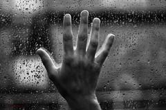 Tristeza tras un muro de lluvia (Leonorgb) Tags: muro canon tren tristeza lluvia mano cristal tgv