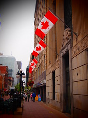 Canadian Flags at Downtown Ottawa (Yohsuke_NIKON_Japan) Tags: canada flag ottawa olympus   red