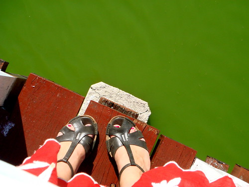 Parque Josone's green pond