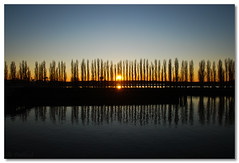 a pearl in the sky (=Я|Rod=) Tags: trees sunset sky reflection water river iso100 evening symmetry clear f16 bremen weser ooc 140s outofcam 23ev nikond80 theperfectphotographer nikon1685vr 1624mm ©rerod я|r ©reinerrodekohr