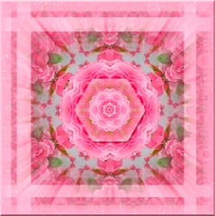 Star in Petals in Hex in Petal Layers - Pink Framed 3D with Stardust