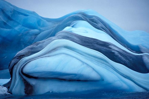 Colorful Antarctic Icebergs