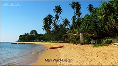 Explore #481....A Gem of a Beach....Nice in Large! (MarsW) Tags: beach indianocean palmtrees srilanka beruwela redboat supershot mywinners theunforgettablepictures goldstaraward earthasia worldwidelandscapes swayiing