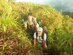 Moorea-Tohiea-16-17 septembre 2008-Marie & Rava sommet