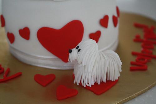 white shih tzu chasing hearts