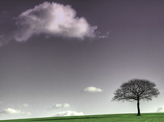 Lonely as a cloud (Martyn Starkey) Tags: cloud tree green photography lonely starkey martyn fiels naturesfinest mywinners platinumphoto goldstaraward