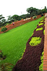Unbelievable green beauty of the garden at    Jatiyo Smriti Soudho Independence memorial park and gardens, Savar, Dhaka, Bangladesh (Wonderlane) Tags: park beauty gardens garden memorial purple dhaka independence dhania bangladesh unbelievable savar 1694 wonderlane jatiyosmritisoudho independencememorialparkandgardens  purplevegetation independencememorialpark