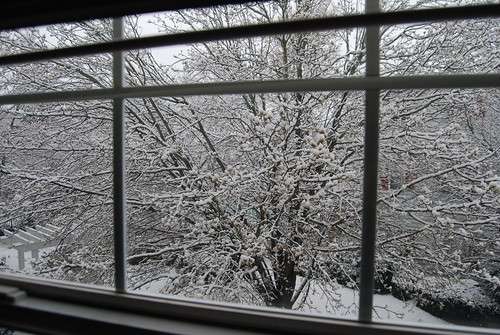 Outside our window