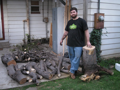 me with large pile of logs and branches of mystery tree