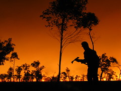 Stuart silhouette - West Wingan (Geoffmo) Tags: fire burn croajingalong mcst