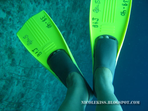 short fins