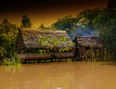 Native Home On The Amazon RIver (Butch Osborne) Tags: travel house home peru southamerica water rio amazon native culture peaceful hut traveling amazonia mustsee indiginous amazonriver serine rioamazonas overseasadventuretravel bucketlist worldwidelandscapes