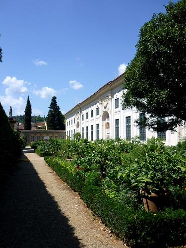 Limonaia, Palazzo Pitti