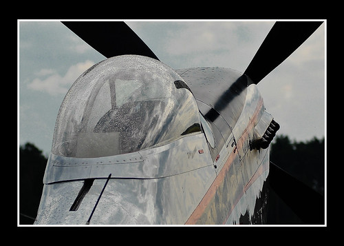 Warbird picture - North American P-51D Mustang / Cavalier