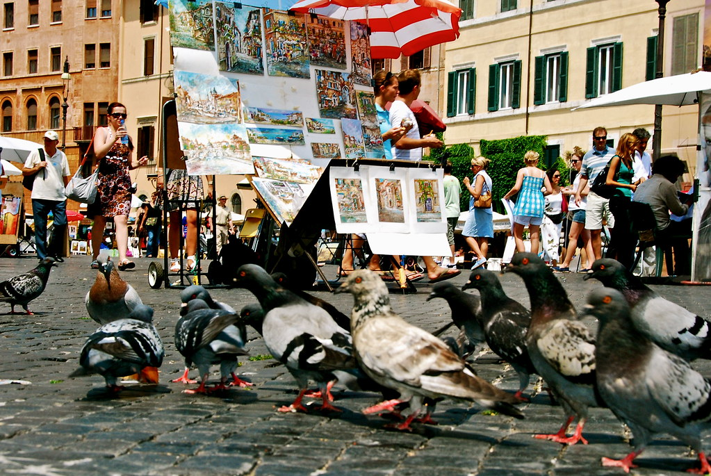 pigeons in Rome