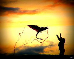 [Explored] ~Try, try until you succeed~ (UpmaSharma) Tags: seattle park sunset sky kite uw nature girl photography nikon colours dragon hill coolpix wa try success kiteflying gasworkspark silhoutte bellevue sharma upma freedon p80 collpix dragonkite upmasharma