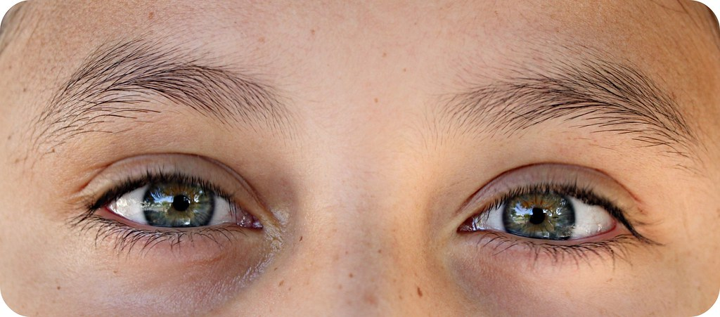 1 eye macro 002