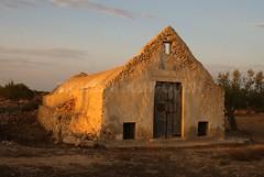 Atelier de tissage djerbien (Tiouajni Mahfoudh) Tags: sculpture architecture djerba minaret may tunisie visite atelier mosquée jerba guellala mahfoudh tissage midoun djerbienne houmt elmay djerbien