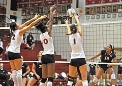 colormehler_volleyball_9.26_2