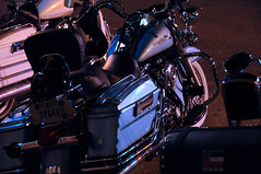 That's my Baby! (E Z Rider Pics) Tags: leather chopper harley chrome harleydavidson biker trike helena musicfestival cherrystreet motorcyclerally bigdog bikerchick custompaint bikerbar deltablues theguesswho helenaarkansas wildhogrally customharleys kffaradio thebluetulip wildhogrally2010 wildhograllyhelenaarkansas awildhogrally thewildhogrally 2010422wildhogfestival