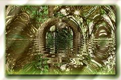Magic Wood!! (**Hazel**) Tags: tree sandy foggy bedfordshire warp wildflower 1990s faststone photoscape
