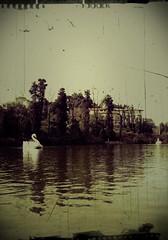 sweet memories. (Thami Griebler) Tags: love amor paddleboat riograndedosul valentinesday gramado pedalinho blacklake diadosnamorados lagonegro
