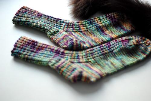 2x2 socks with cat