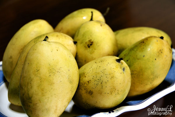 Day 28: Ripe Mangoes