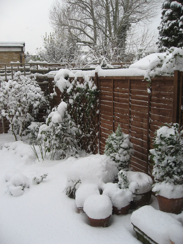 Snowy London 003