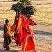 Women farm - India Study Abroad