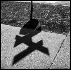 Stop Sign (Voxphoto) Tags: shadow blackandwhite bw sign 127 sidewalk sq efker100 yashica44