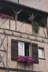 Windows of Figeac 1 (gilltheaker) Tags: flowers france window balcony lot shutters petunias halftimbered roofgarden figeac