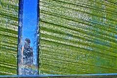 foss... (nanna lind) Tags: portrait sculpture water self waterfall rainbow foss squared vatn regnbogi bifrst fyssa selfiesquared