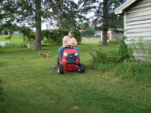 Lawn mower(s)