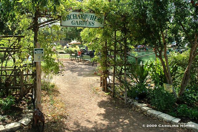 Dromgoole's Natural Gardener nursery
