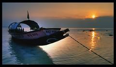 Blacktip dawn hdr - trek