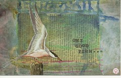 Deserves another... (FarStarr) Tags: one recycled handmade postcard mailart tern hpc swapbot