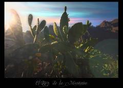 el Rey de la Montaña (el maui / lefotodelmaui.it) Tags: sunset sea sky españa santacruz sun clouds sunrise volcano islands wide wideangle maui tenerife vulcan canary teide isle atlanticocean canaryislands isla canaria magma vulcano garachico isola lasamericas vulkan volkan masca lagomera canarie losgigantes puertosantiago lapalmas lefotodelmauiit lefotodelmaui aronadetenerife