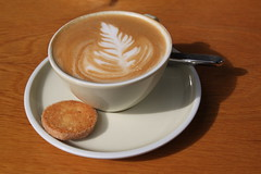 delicious coffee-break...this morning (virginhoney) Tags: tree sunshine outside leaf cookie sunny cappuccino