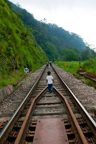 Chitra Aiyer - Son on the tracks, Sakleshpur