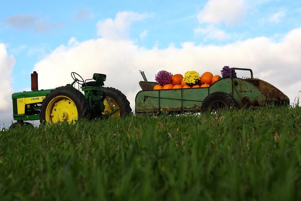 13 John Deere Pumpkin Photos