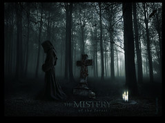 Blend - Mistery of the forest - wallpaper - version 2 (balt-arts) Tags: moon grave forest photoshop dark wizard magic fantasy mage nigth cementery monje